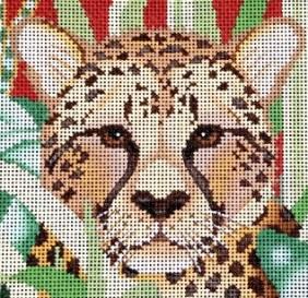 cheetah- featured