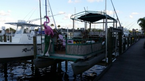 Flamingo boat ride