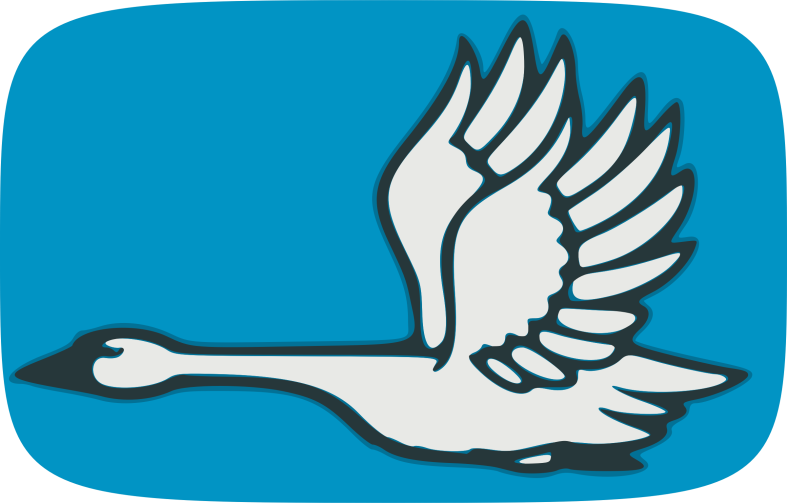 flying-swan